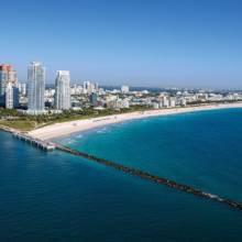 Gled Miami